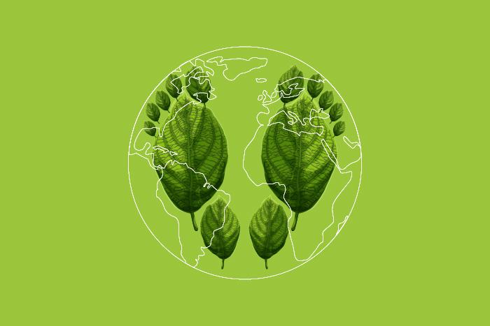 Какой экологический след вы оставляете?