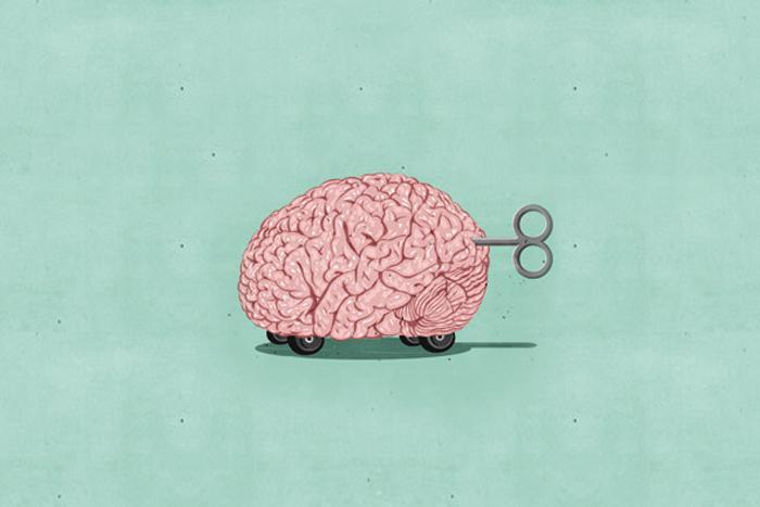 Что такое адаптивный интеллект и как его развивать