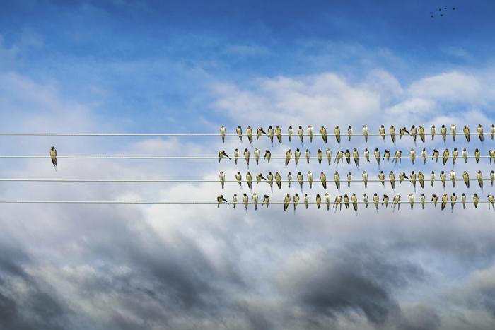 Противостояние личности и команды: можно ли (и нужно ли) работать вместе?