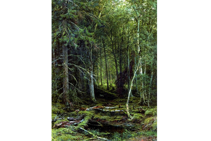 Иван Шишкин, «Лесная глушь» (1872г.)