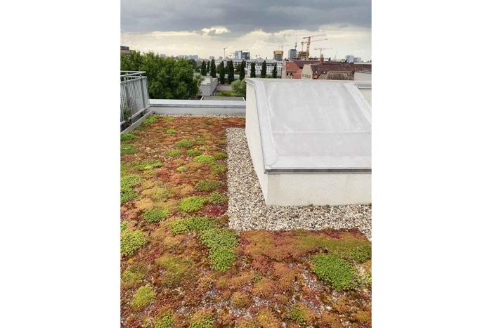 Берлин. Крыша жилого дома. Фото автора