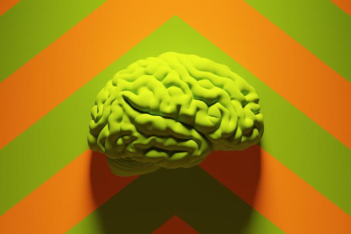 7 фактов о том, что происходит с вашим мозгом, когда вы учитесь чему-то новому