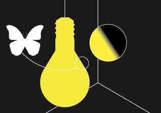 Почему бабочки *летят на свет*
