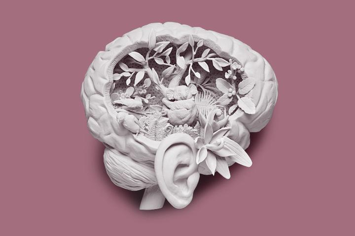 Что делать если слышишь голоса в голове