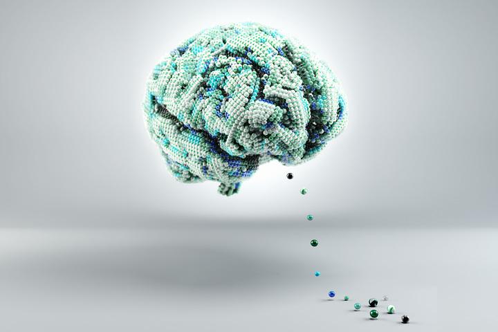 Химия мозга: от медиаторов до психоделиков