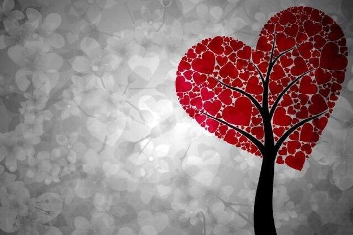 О любви к себе и близким