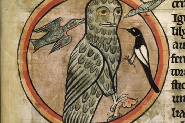 Птицы в истории
