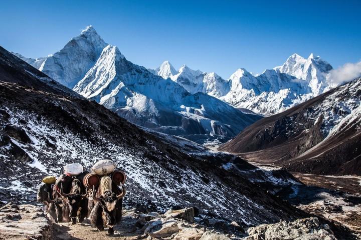 «Гималаи и Непал». Лекция Маргариты Королевой