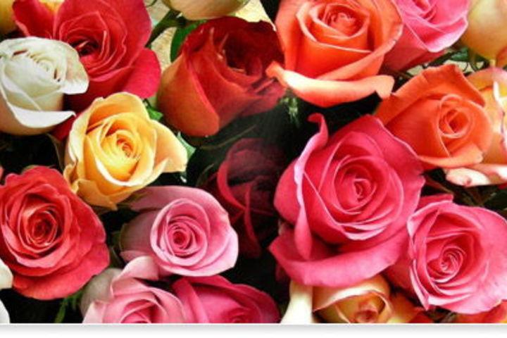Флорист-декоратор: тест-драйв профессии