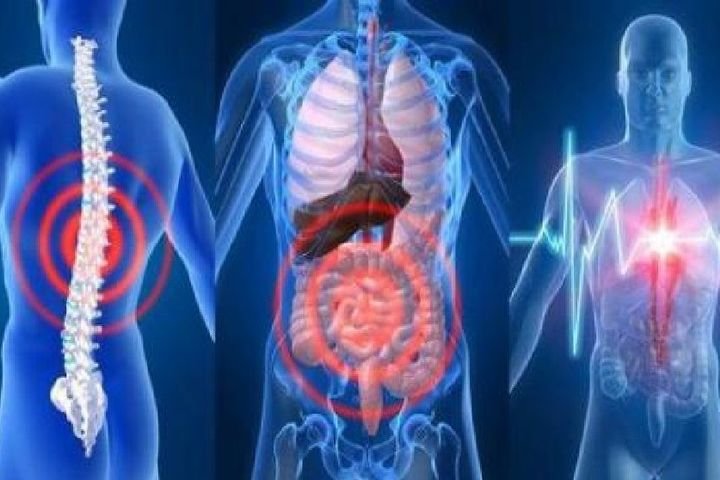 Индивидуально-целевая диагностика ресурса человека. Тело (аппараты, специалисты)