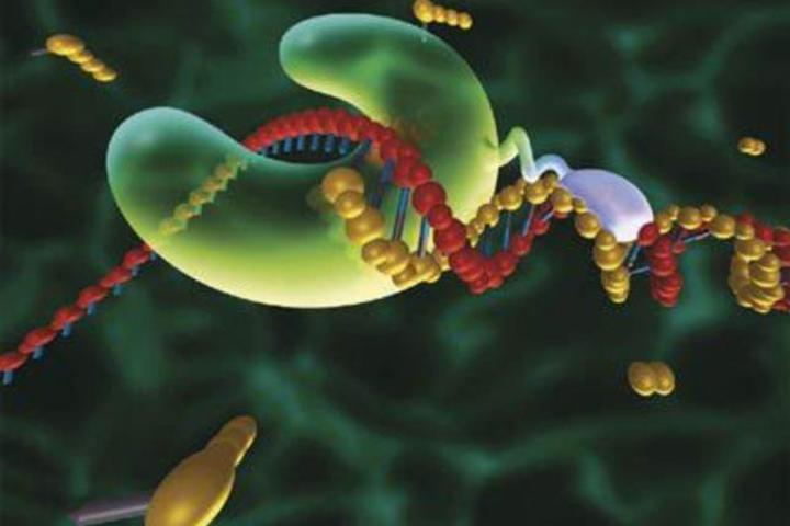 Происхождение ДНК и систем ее копирования