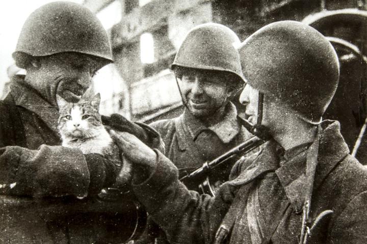 Открытие выставки «Город гнева: Сталинградская битва в литературе»