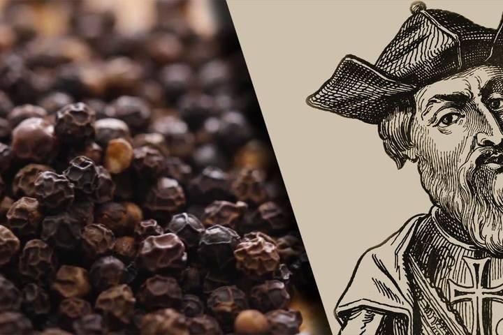 Черный перец. Что вдохновило Васко да Гама. Интерактивная лекция