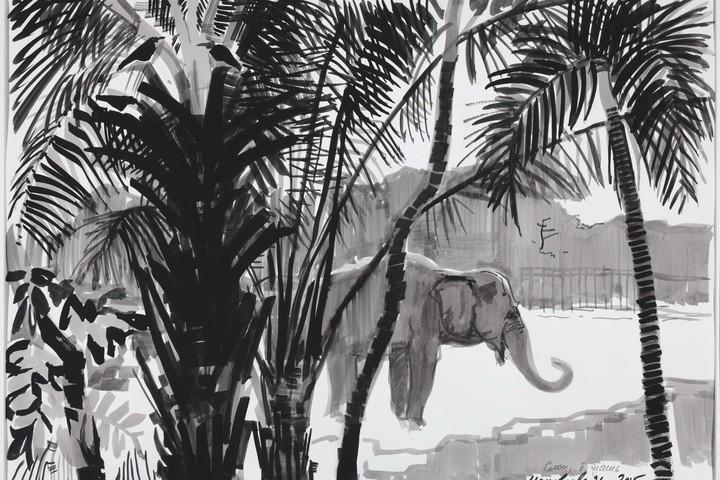 «Путешествие художника-анималиста И.П.Маковеевой в Индокитай: Земля Слонов»