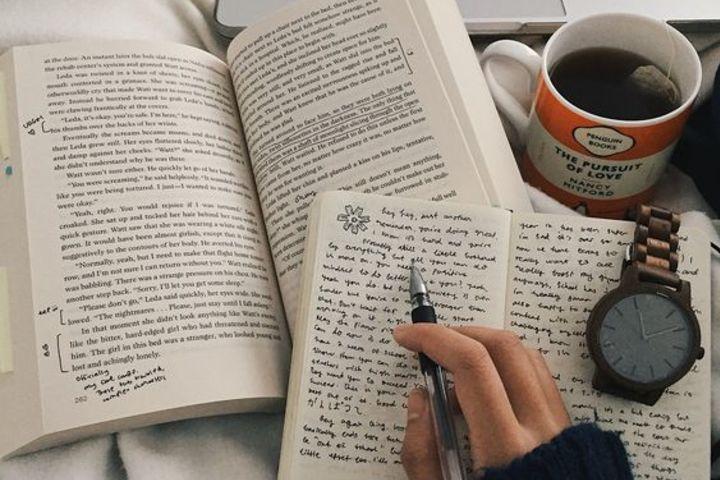 Открытый урок английского языка для Beginners