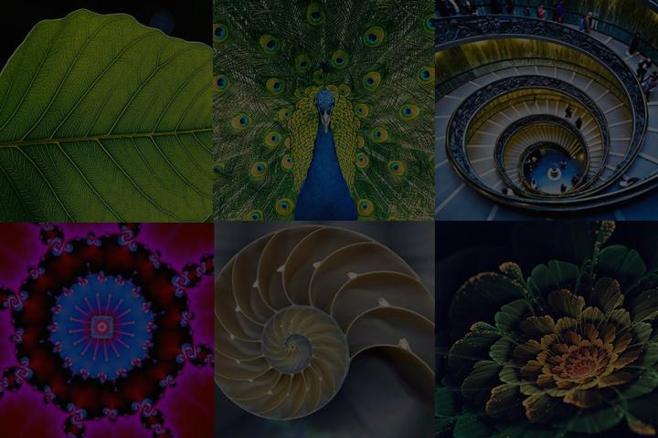 Интерактивная лекция «Симметрия и фракталы. Математика с ее прекрасной стороны»