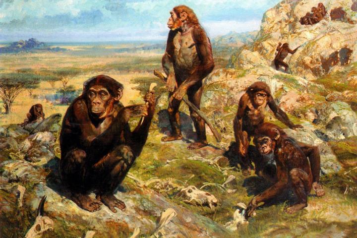 Прямохождение и человекообразность: динозавры, птицы и приматы