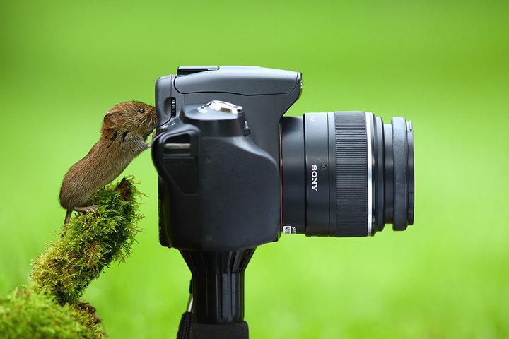 """""""Как я воспринимаю мир"""" фото мастер-класс"""