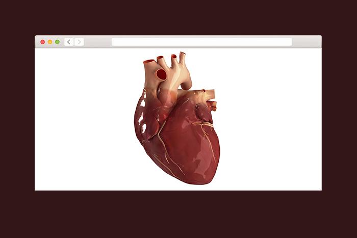 Как несчастная любовь влияет на наши сердца