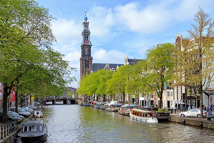 Теория изменения мира: как я поехала в Амстердам, чтобы научиться охранять окружающую среду