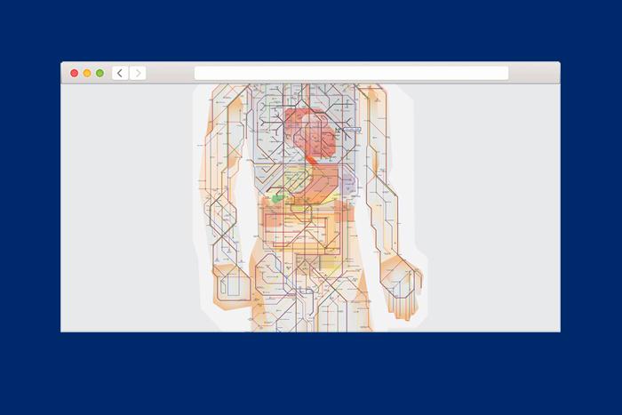 Анатомия человека в виде карты метро