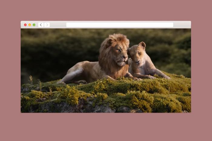 Величие стаи зависит от львиц: биолог анализирует фильм «Король Лев»